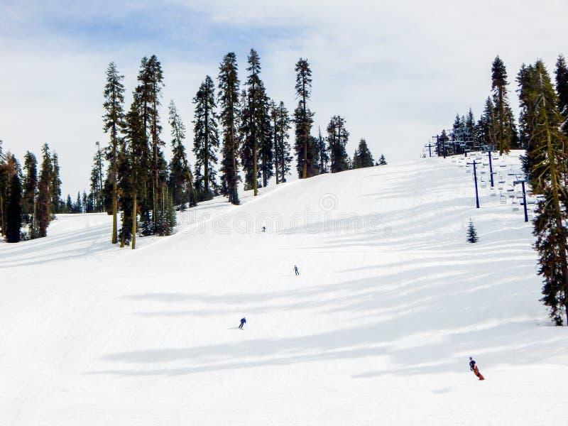 Passagem nevado do texugo no parque de Yosemite imagem de stock