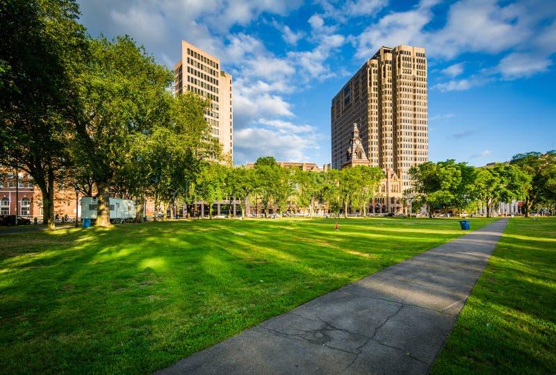 Passagem no verde e nas construções de New Haven dentro na cidade, em novo imagem de stock