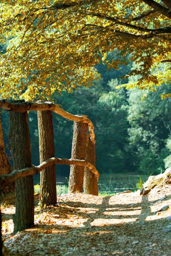 Passaggio della rete fissa di autunno fotografie stock libere da diritti