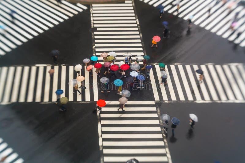 Passaggio pedonale con gli ombrelli, Sukiyabashi, pedone, incrocio, Ginza, Tokyo fotografie stock libere da diritti