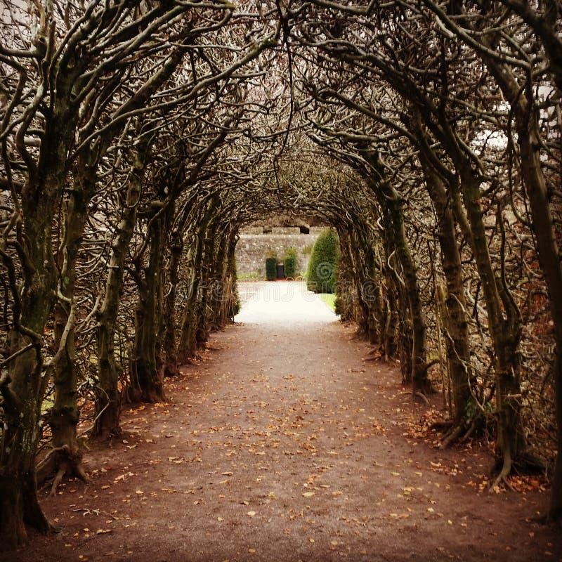 Passaggio pedonale del giardino fotografie stock