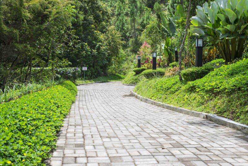 Passaggio pedonale del giardino immagine stock