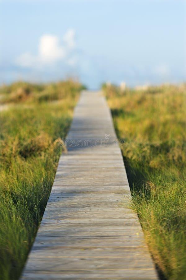 Passaggio pedonale di legno di accesso della spiaggia. fotografia stock