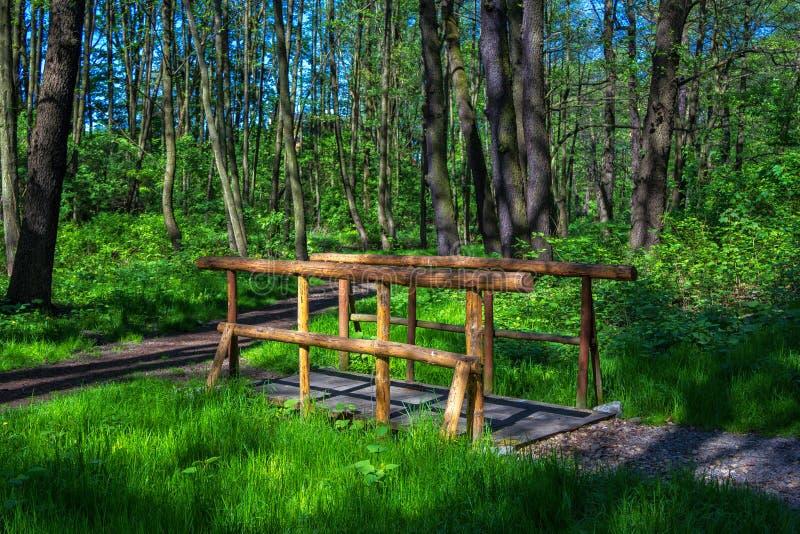 Passaggio pedonale di legno, fatto dei tronchi di albero immagine stock libera da diritti