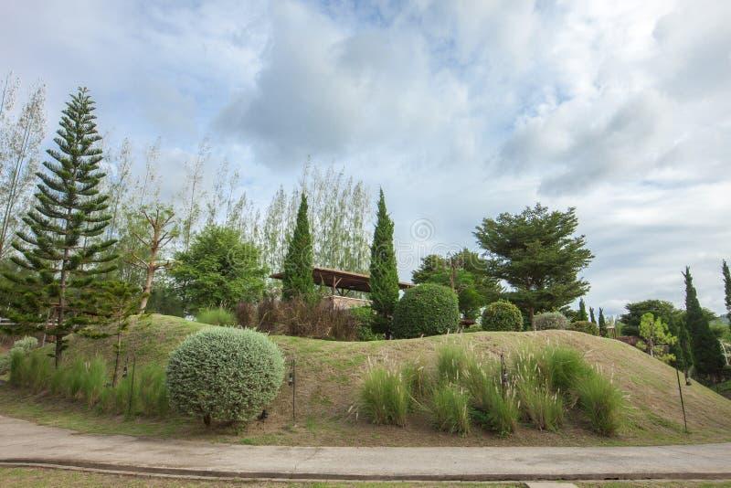 Passaggio pedonale di pietra con il giardino dell'erba fotografia stock