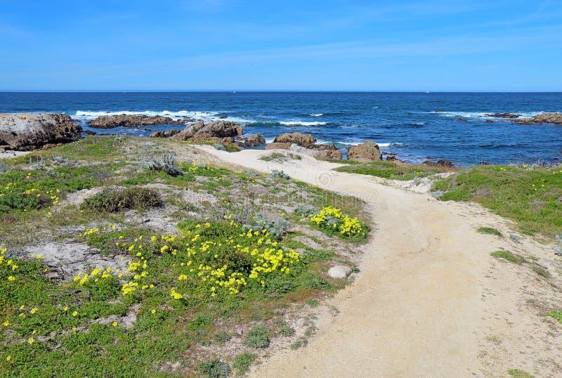 Passaggio pedonale lungo il bluff che trascura la spiaggia di stato di Asilomar in Paci fotografia stock libera da diritti