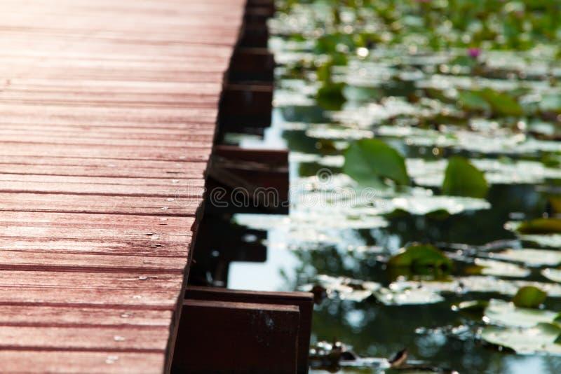 Passaggio pedonale nel lago Coldwater immagini stock libere da diritti