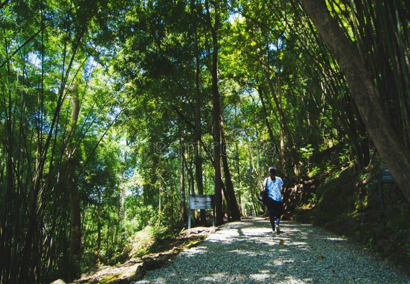 Passaggio turistico di pene dell'inferno delle passeggiate del ` s delle donne, Kanchanaburi immagine stock