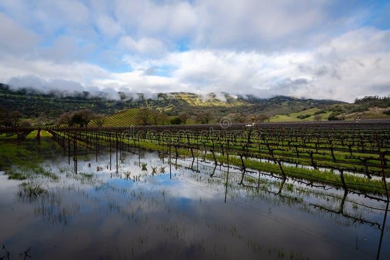 Passando a tempestade sobre Napa Valley imagens de stock