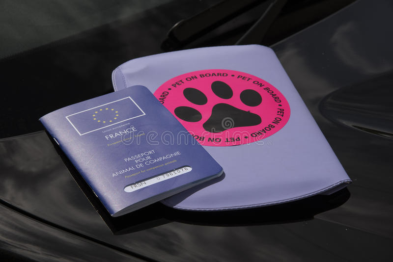 Passaporte do animal de estimação e animal de estimação a bordo da etiqueta foto de stock royalty free
