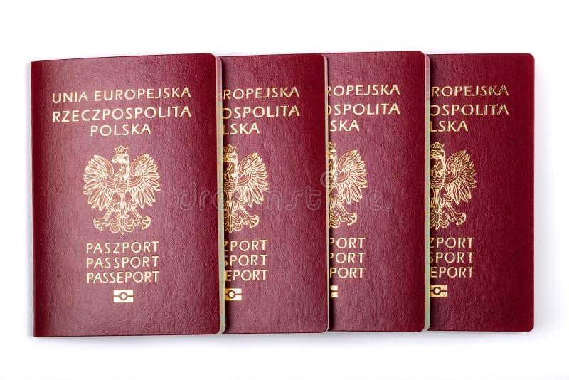 Passaporti polacchi fotografia stock libera da diritti