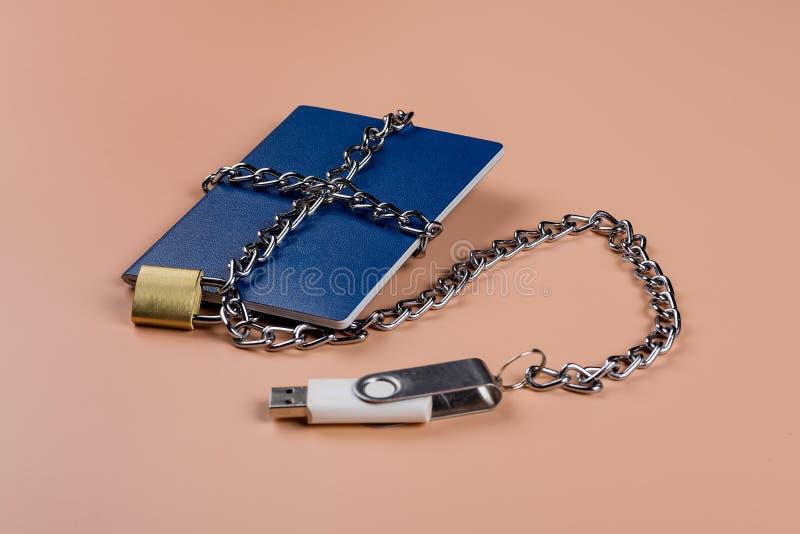 Passaporto biometrico Controllo elettronico sopra umanità fotografia stock libera da diritti