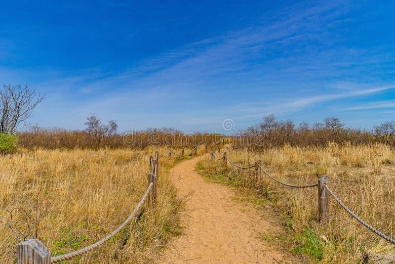 Passe through sand dunes, Staten Island NY. US. Passe through sand dunes, Staten Island NY US royalty free stock image