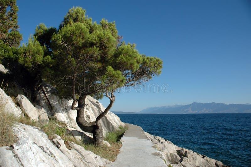 Passeggiata della spiaggia fotografie stock libere da diritti
