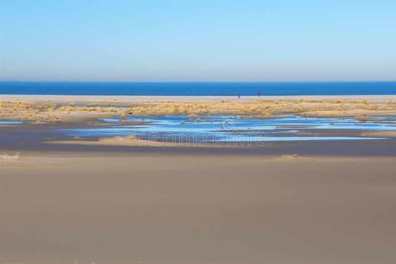 Passeggiata della spiaggia di due persone sull'ampia, spiaggia sabbiosa senza fine dell'isola di Norderney a febbraio immagini stock