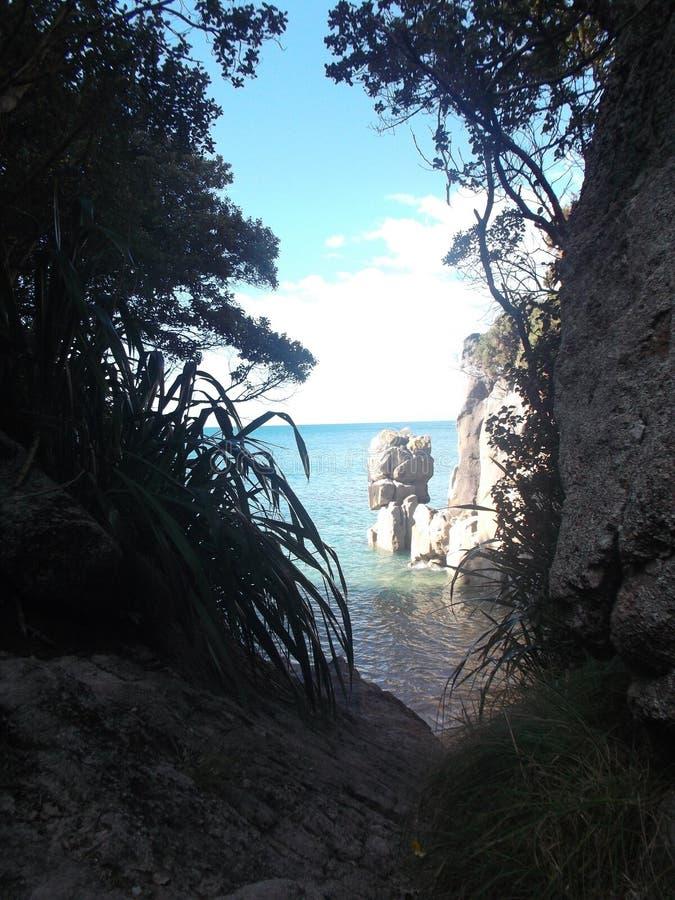 Passeggiata di Abel Tasman National Park Great fotografia stock libera da diritti
