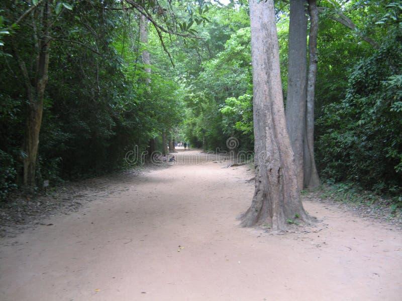 Passeggiata di Angkor fotografia stock