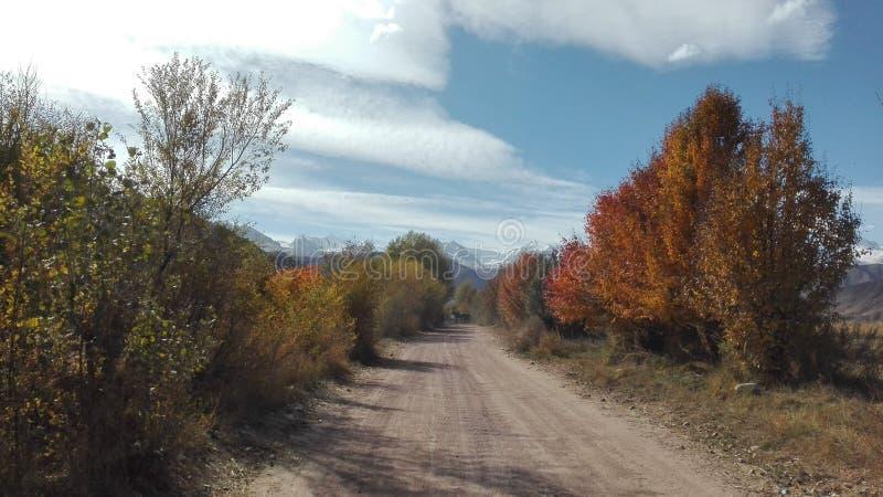 Passeggiata di autunno in Bokonbayevo in Kyrgzystan fotografia stock libera da diritti