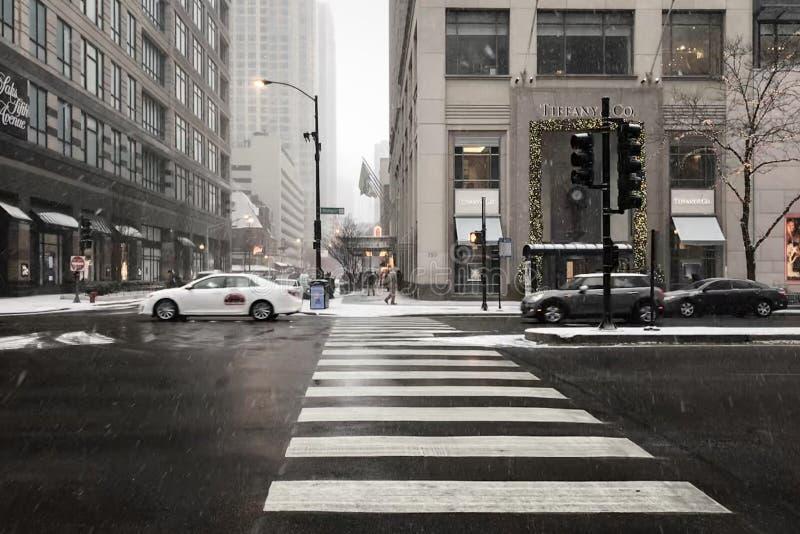 Passeggiata di Chicago nella stagione invernale immagine stock