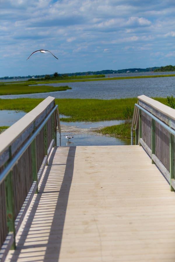 Passeggiata & inferriata nel parco nazionale della spiaggia dell'isola di Assateague fotografia stock