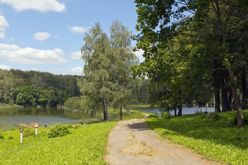 Passeggiata in parco della proprietà di Talashkino fotografia stock libera da diritti