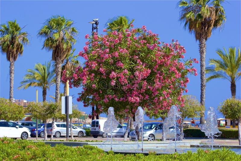 Passeggiata a Salou, Spagna fotografia stock