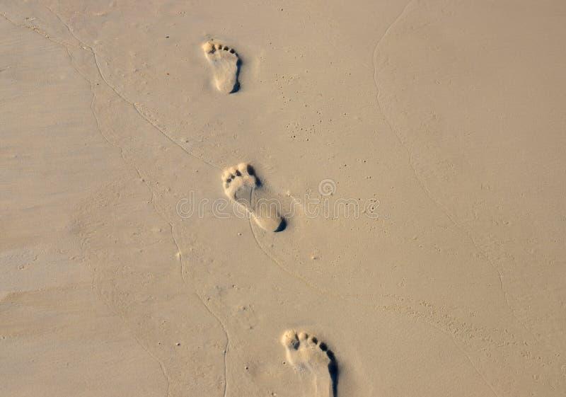 Passeggiata scalza su giallo sabbia bagnato Foto di struttura della spiaggia Segni del piede sulla spiaggia Insegna del segno del immagine stock