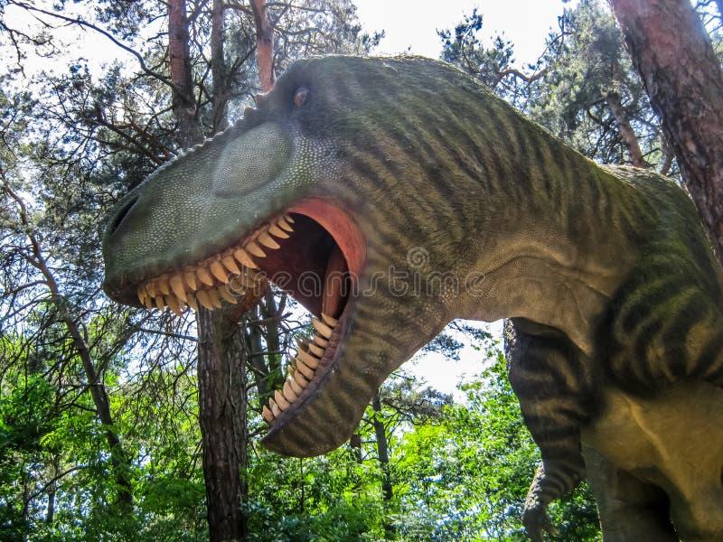 Passeggiate nel bosco del rex di tirannosauro immagine stock libera da diritti