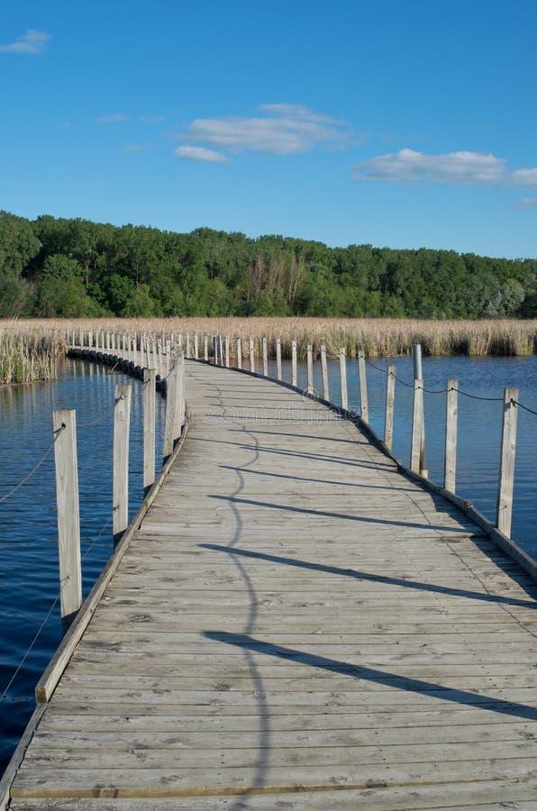 Passeio à beira mar de madeira do parque do lago através do pântano fotos de stock