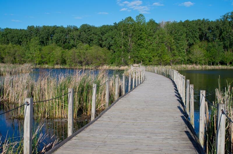 Passeio à beira mar de madeira do parque do lago cênico foto de stock