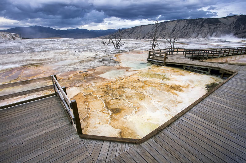 Passeio à beira mar de Mammoth Hot Springs no parque nacional de Yellowstone imagem de stock