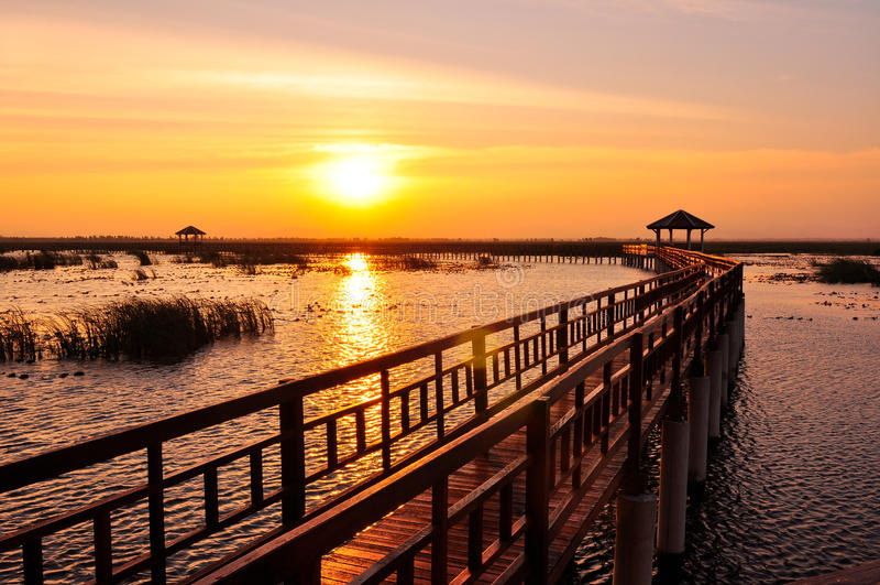 Passeio à beira mar no lago no por do sol imagem de stock royalty free
