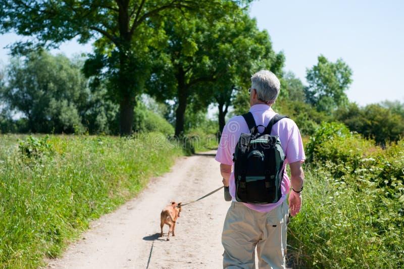 Passeio com o cão na natureza fotografia de stock royalty free