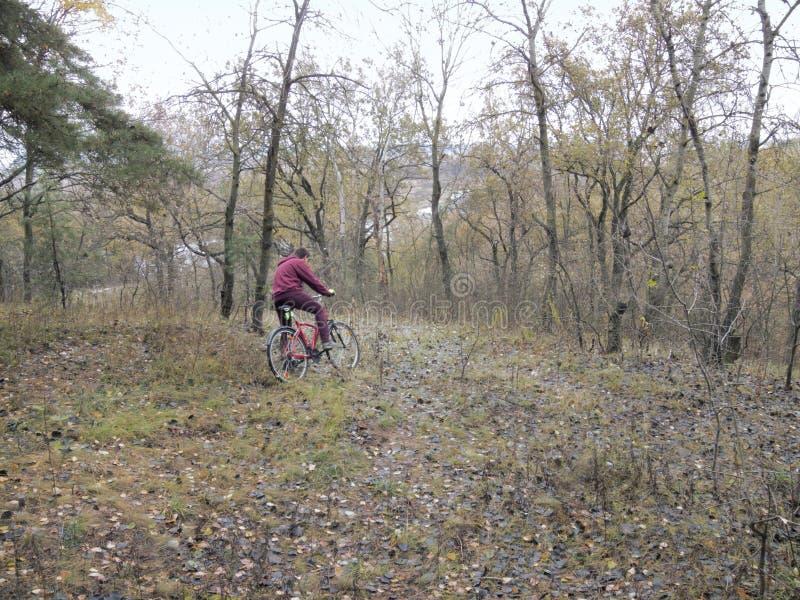 Passeio da bicicleta através do terreno desconhecido o campo escuro fotos de stock