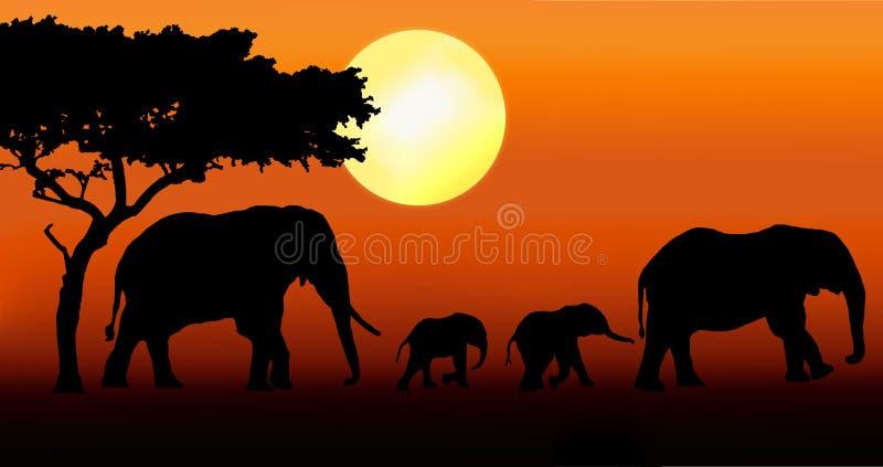 Passeio da família do elefante   ilustração stock