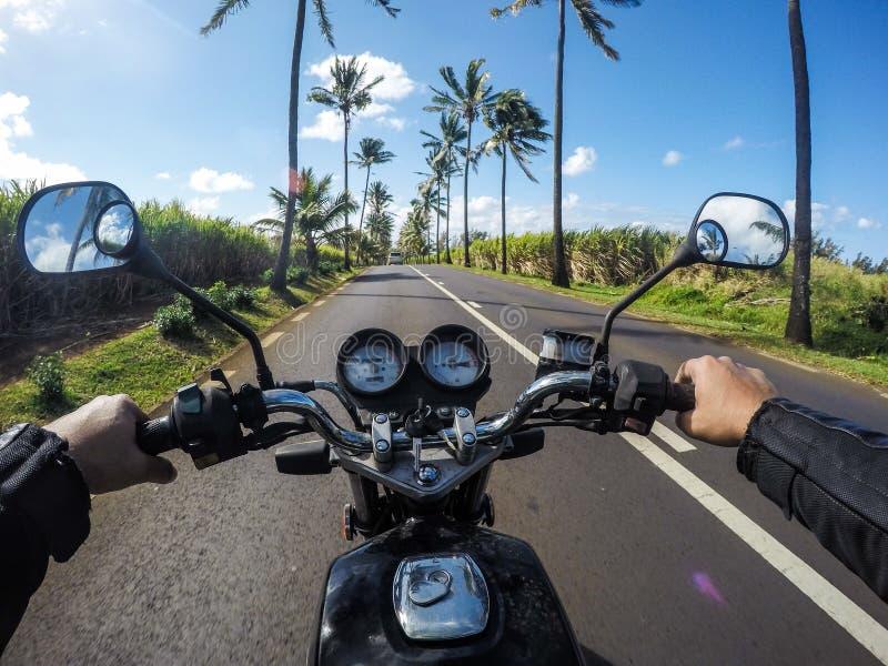Passeio da motocicleta com árvores de coco Bel Ombre Mauritius imagens de stock royalty free