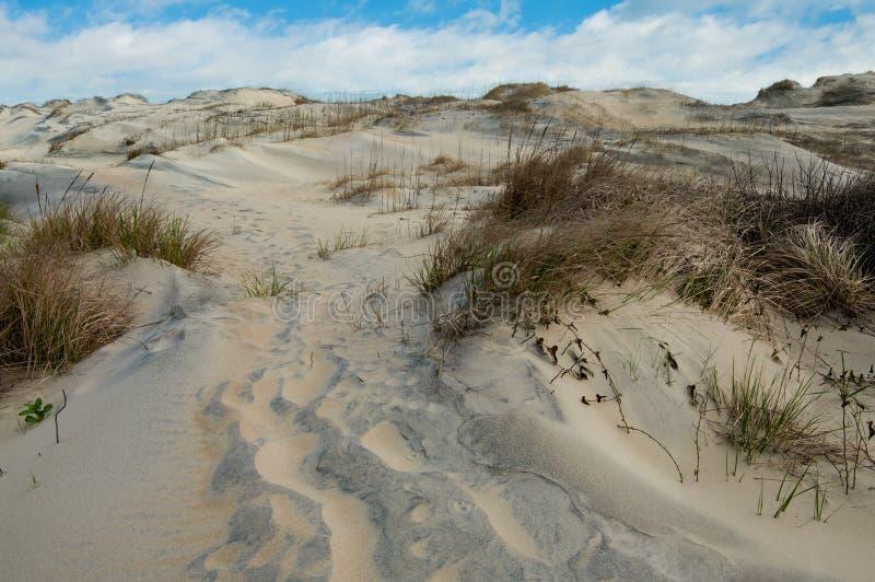 Passeio das dunas de areia foto de stock