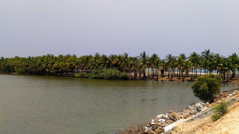 Passeio de Pondicherry na praia do paraíso o lago imediatamente antes do mar imagens de stock
