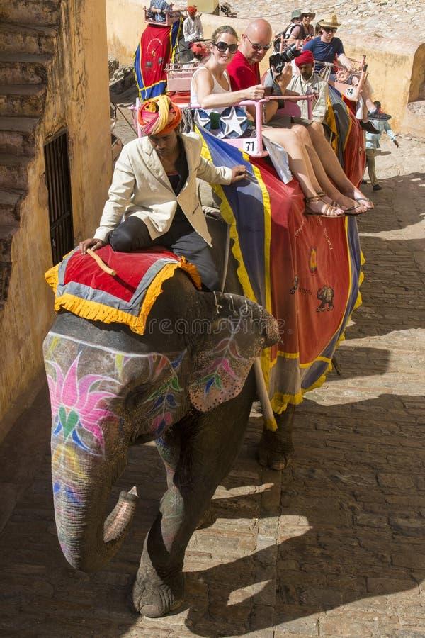 Passeio do elefante, turistas, curso da Índia, divertimento das férias foto de stock