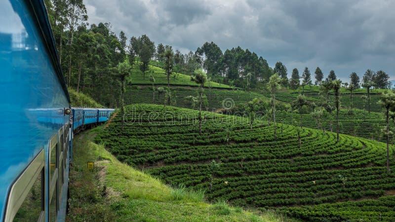 Passeio do trem em Sri Lanka fotografia de stock
