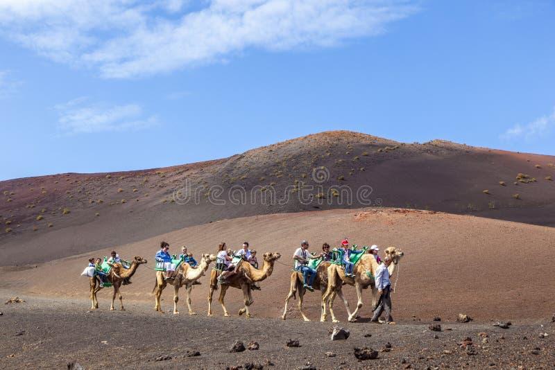 Passeio dos turistas nos camelos que são imagem de stock royalty free