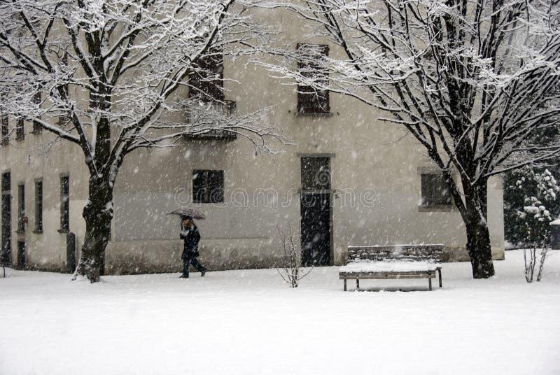 Passeio durante uma queda de neve fotografia de stock