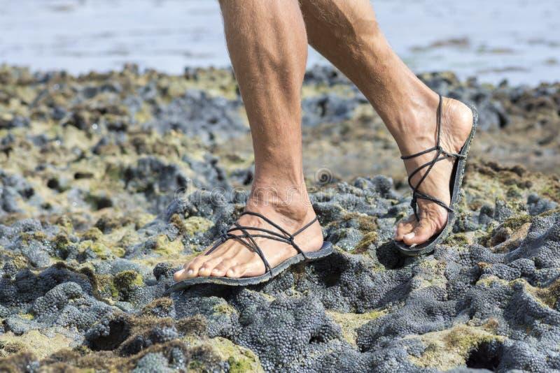 Passeio nas sandálias no recife de corais fotografia de stock