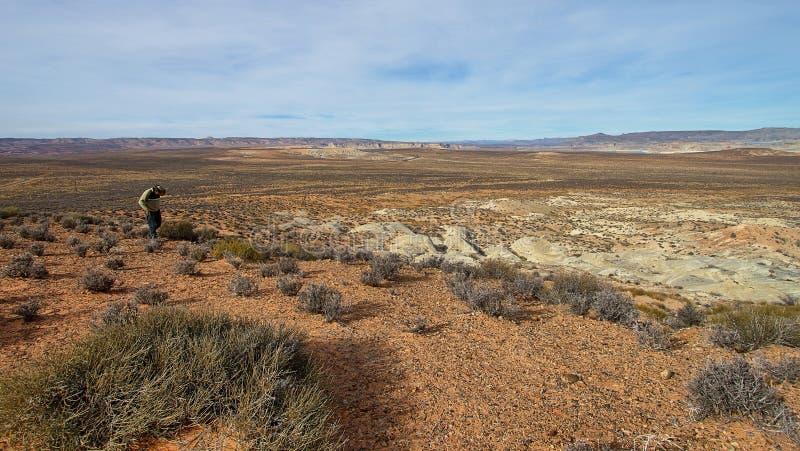 Passeio no deserto imagem de stock