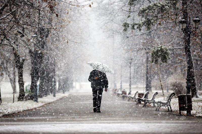 Passeio no parque durante a neve imagens de stock