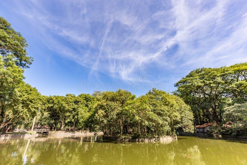 Passeio Publico park Curitiba, Parana stan - Brazylia obraz royalty free