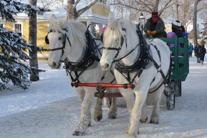 Passeio puxado por cavalos do vagão do feriado fotografia de stock