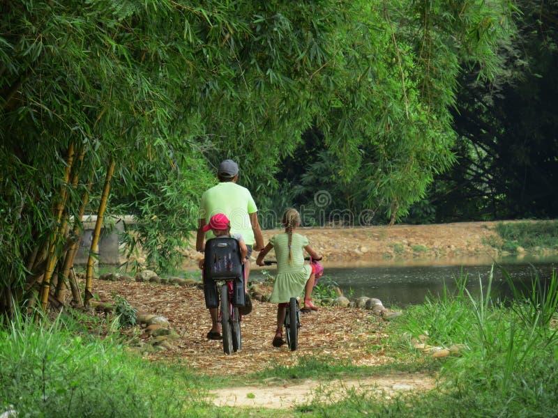 Passeios da família no parque das bicicletas fotografia de stock royalty free