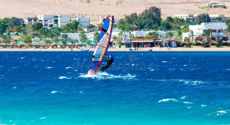 Passeios do Windsurfer no fundo da praia com um hotel e de palmeiras em Egito Dahab Sinai sul imagens de stock royalty free