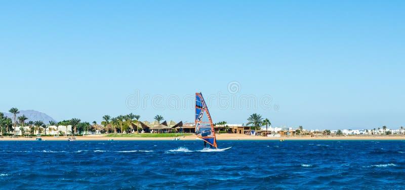 Passeios do Windsurfer no mar no fundo da praia com palmeiras e as montanhas rochosas altas em Egito Dahab fotos de stock